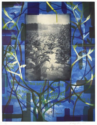 Radcliffe Bailey, Tobacco Blues, 2000, b. 1968, color spitbite and sugarlift aquatint with softground, hardground, drypoint, photogravure, and chine collé on Somerset soft white paper. Promised gift of Catherine and Bill Cabaniss in honor of Ron Platt, 250.2013