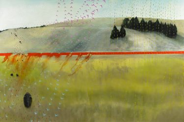 Buffalo Vector (Yellowstone Border). erritt Johnson, 2009-2010. Oil and alkyd on canvas. Gift of the artist, AFI463.2012.