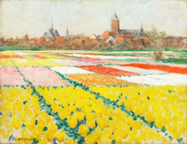 Tulip Field on the Outskirts of Leiden