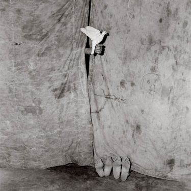 """""""Juxtaposed"""" (2004), Roger Ballen. Gelatin silver print. Collection of the Art Fund, Inc. at the Birmingham Museum of Art; Gift of the artist, AFI.83.2011"""