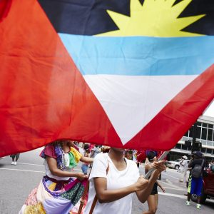 A Caribbean flag in the Caribbean Day parade.
