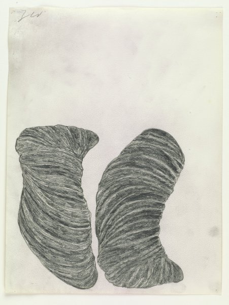 Terry Winters, American, born 1949, Untitled, 1989, graphite on paper; Collection of the Art Fund, Inc. at the Birmingham Museum of Art; Gift of Sally and Wynn Kramarsky T.2017.61