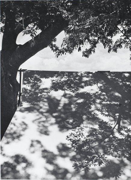 Luz Restirada (Lengthened Light), Manuel Álvarez Bravo, Portfolio published by Acorn Editions Limited, gelatin silver print