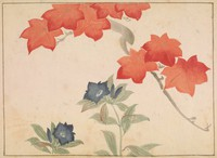 Album leaf with painting of red maple leaves with blue flowers
