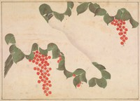 Album leaf with painting of leaves and berries against a field of snow