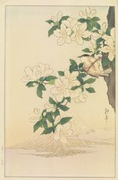 Azaleas and Mt. Fuji, Shoda Koho, Published by Nishinomiya Yosaku, ink and color on paper
