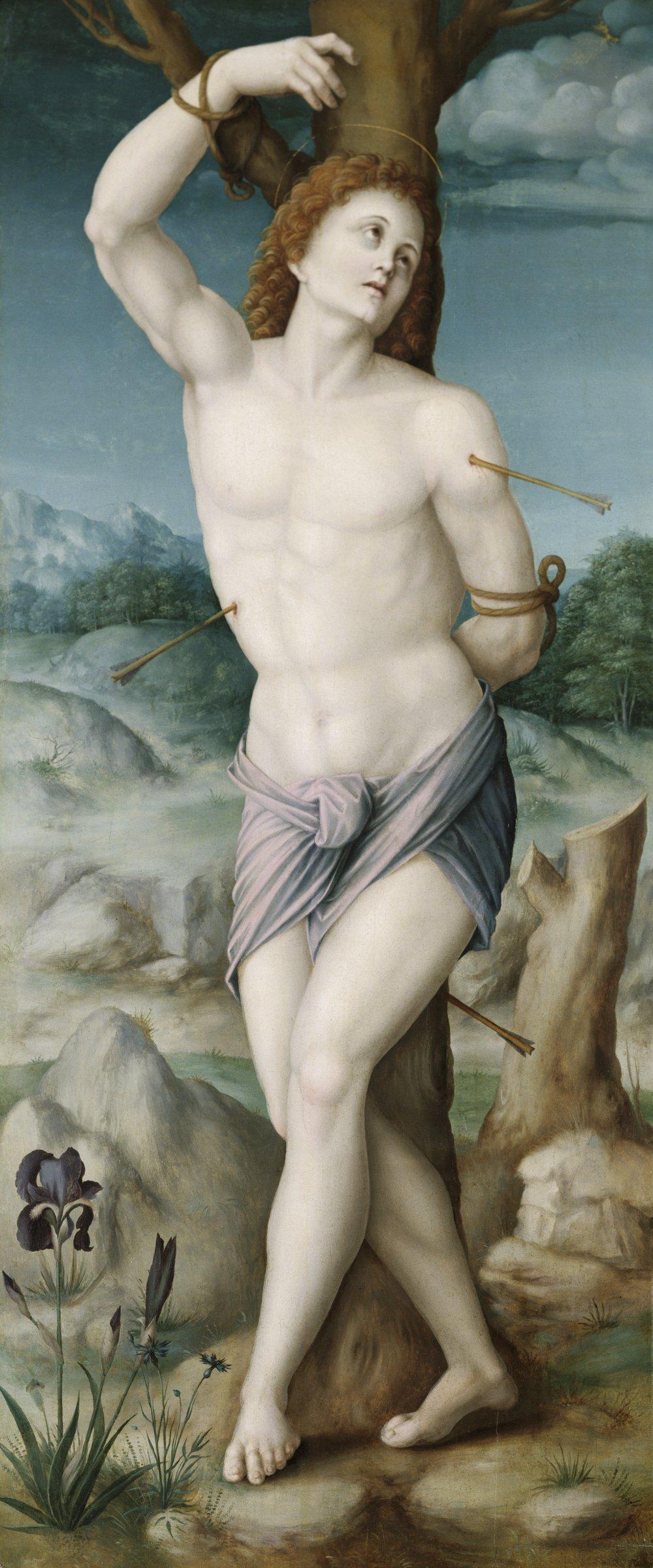 Saint Sebastian, Francesco d'Ubertino Verdi, called Bacchiacca, oil on panel