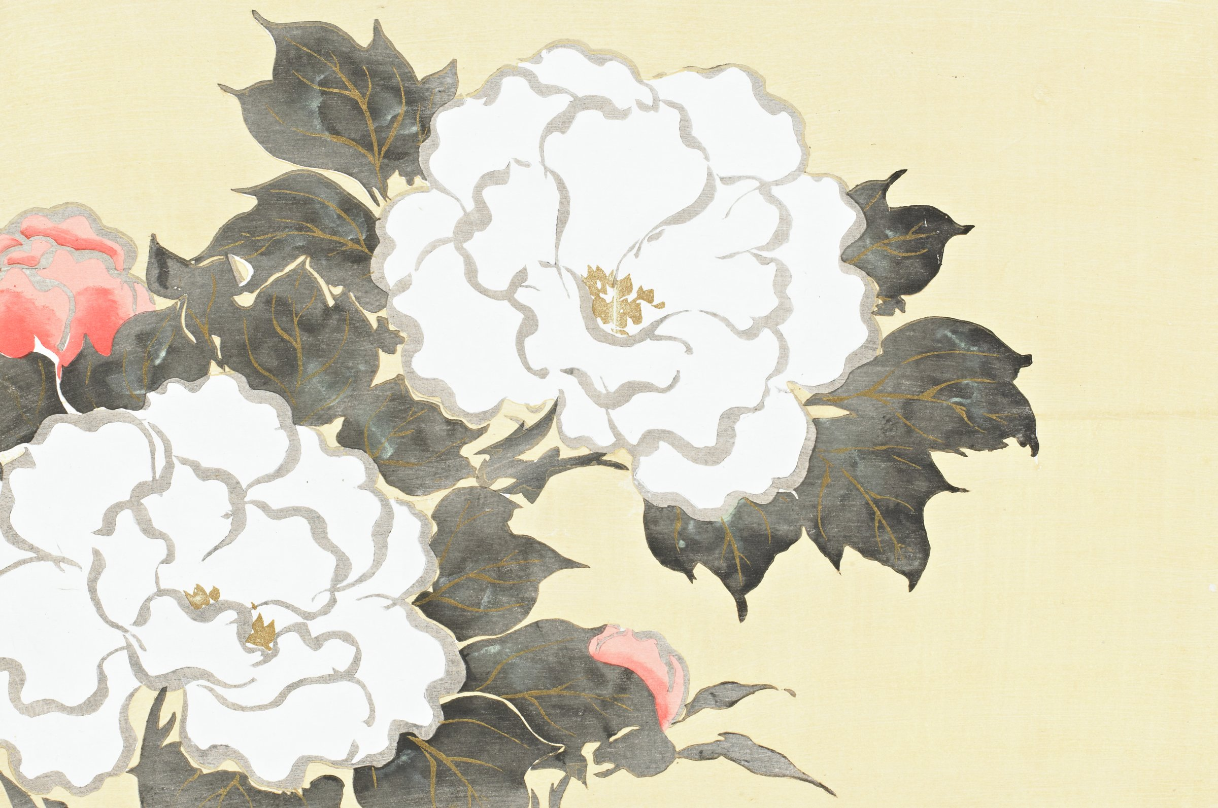 A peony, called botan, or fukamigusa.