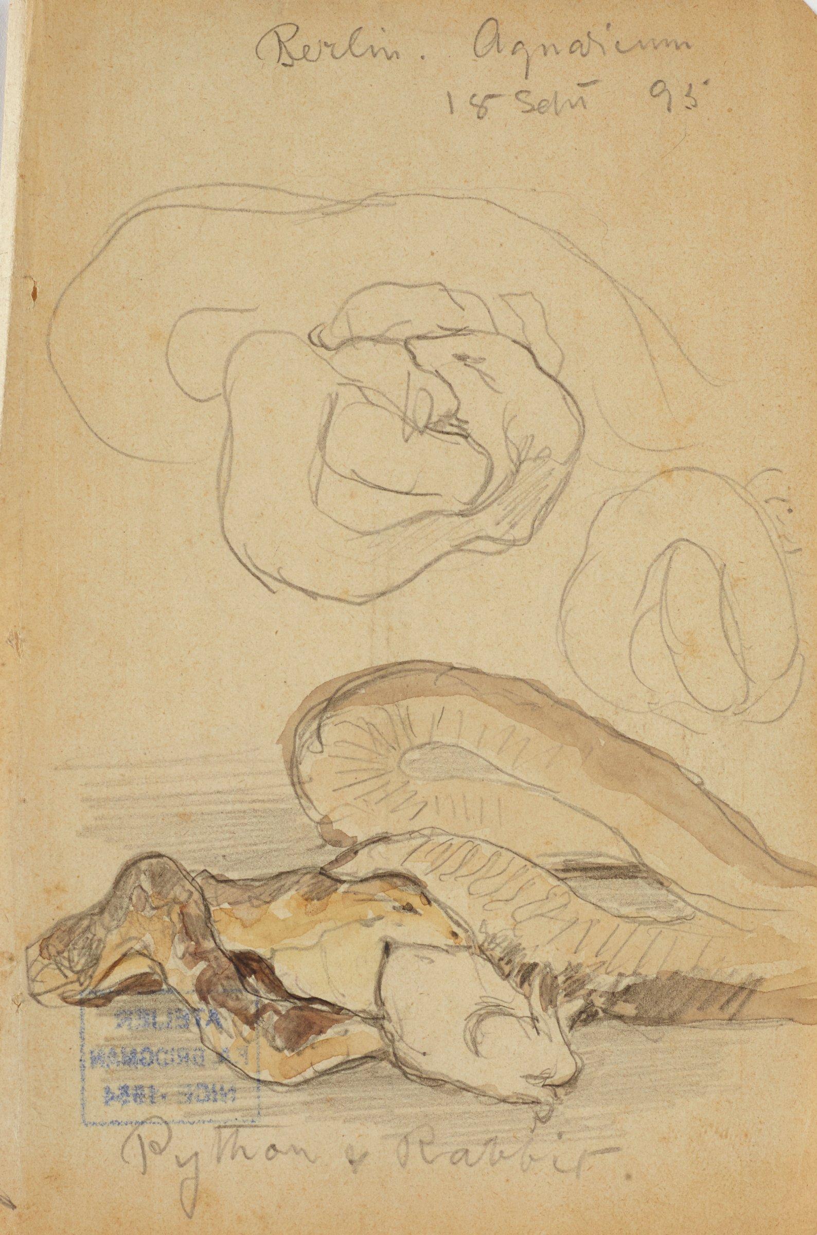 Python and Rabbit, Frederic Arthur Bridgman, graphite on paper