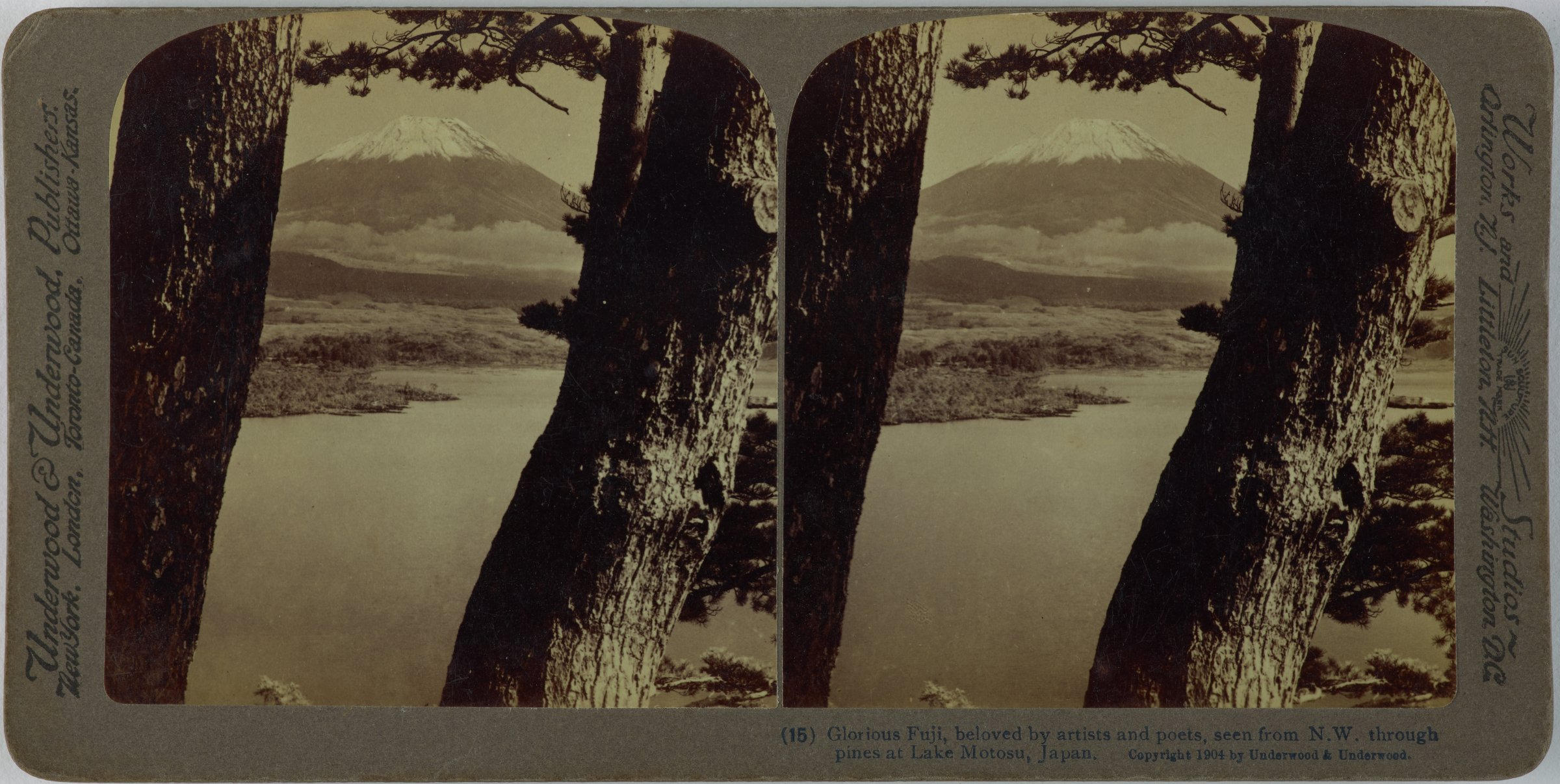 Glorious Fuji, beloved by artists and poets, seen from N.W. through pines at Lake Motosu, Japan, Underwood & Underwood Publishers, gelatin silver prints mounted on card