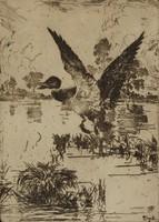 Mallard Rising, Frank Weston Benson, etching