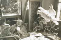 Henri Matisse, Vence, France, 1944, Henri Cartier-Bresson, gelatin/bromide print