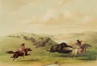 Buffalo Hunting, George Catlin, lithograph