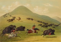 Buffalo Hunt, Chase, George Catlin, lithograph