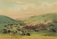 Buffalo Hunt, Surround, George Catlin, lithograph