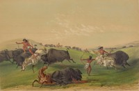 Buffalo Hunt Chase, George Catlin, lithograph