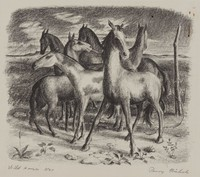 Wild Horses, Perry Nichols, lithograph