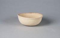 Bowl, Mexico, Pre-Columbian, earthenware