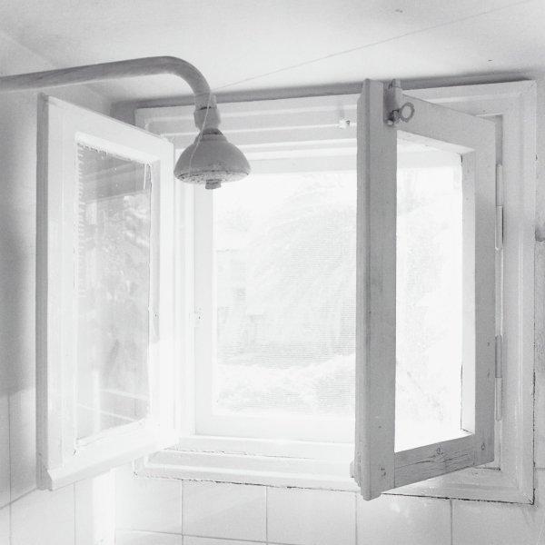 Window, Israel, Harriet M. Leibowitz, selinium toned gelatin silver print
