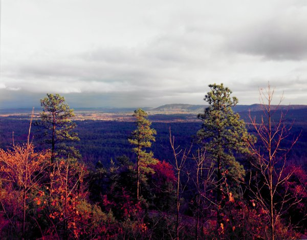Late Afternoon Landscape, Near Birmingham, Alabama, William Christenberry, chromogenic print