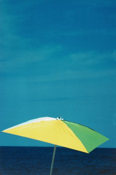 Untitled (Umbrella on Beach) East Hampton, 1981, Ralph Gibson, Portfolio published by Double Elephant Editions, Ltd., Type C color print