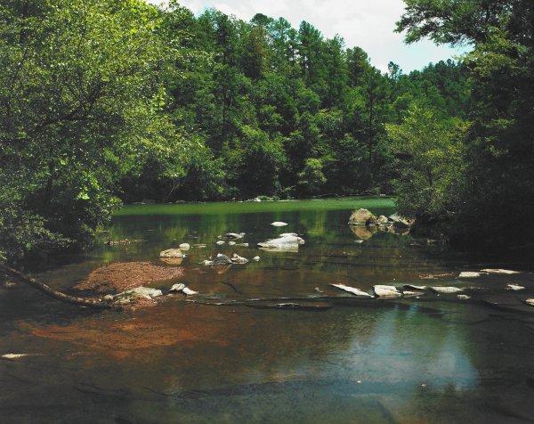 Cahaba River, William Christenberry, Iris print