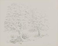 Two Trees, Joel Goldblatt, lithograph on Arches paper
