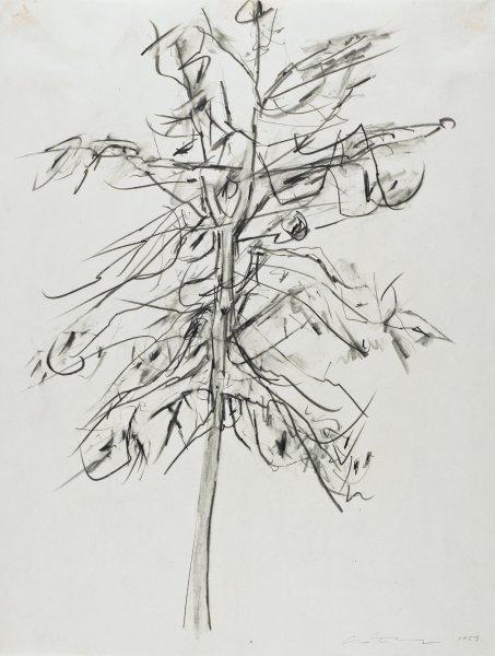 Tree, William Christenberry, graphite on wove paper