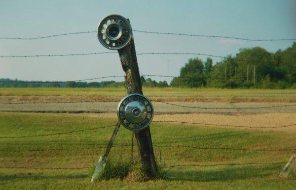 Hubcaps and Fence, near Tuscaloosa, Alabama, 1990, William Christenberry, chromogenic print