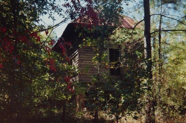 House in Thicket, Hale County, Alabama, October 1996, William Christenberry, chromogenic print