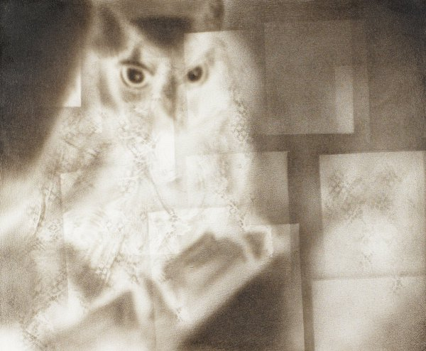 Owl with layers of squares; lace patterns in light color; monochromatic painting