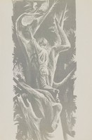 Man reaching for bird in tree