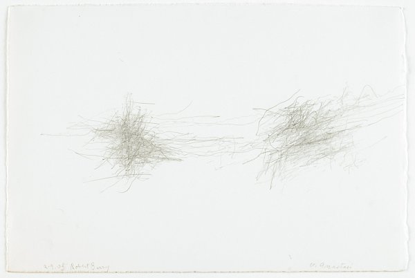 A drawing of skittery lines that create two dense, side-by-side clusters of lines at the left and right center of a sheet of paper.
