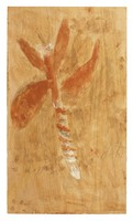 Untitled (Insect?), Jimmy Lee Sudduth, paint and mud on wood board