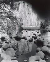 El Capitan, Yosemite, Robert Werling, gelatin silver print