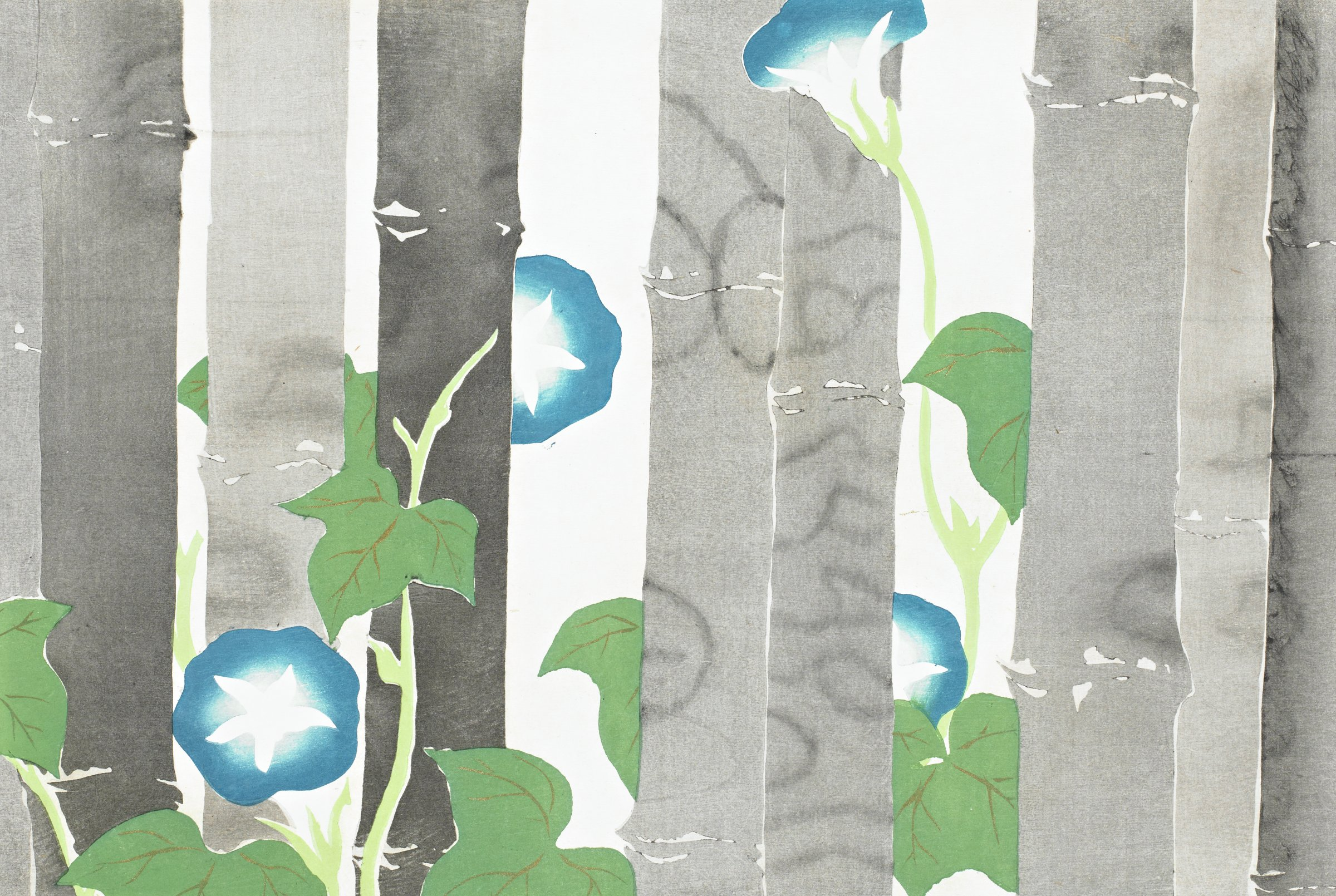 Asagao (Morning Glories), from Momoyogusa (A World of Things), Volume 1, Kamisaka Sekka, ink and color on paper