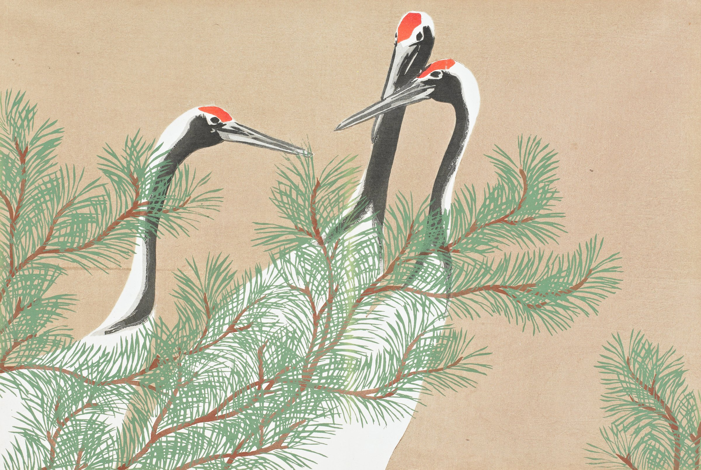 Tsuru (Cranes), from Momoyogusa (A World of Things), Volume 2, Kamisaka Sekka, ink and color on paper