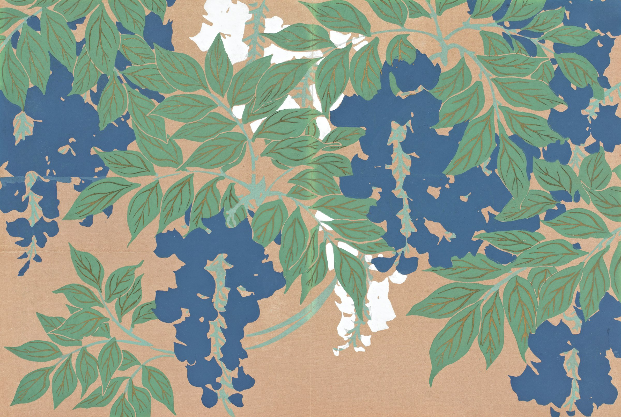 Fuji (Wisteria), from Momoyogusa (A World of Things), Volume 2, Kamisaka Sekka, ink and color on paper