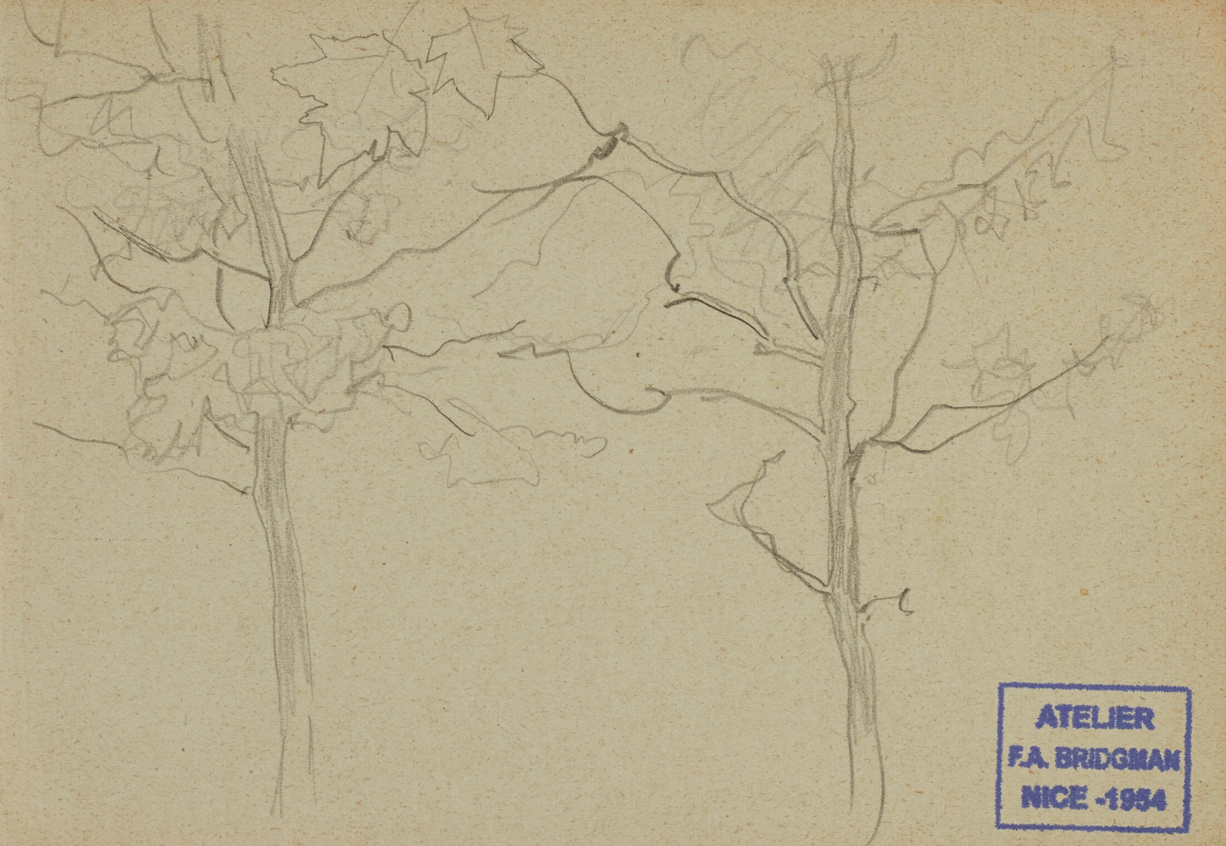 Untitled (Two Trees), Frederic Arthur Bridgman, graphite on paper