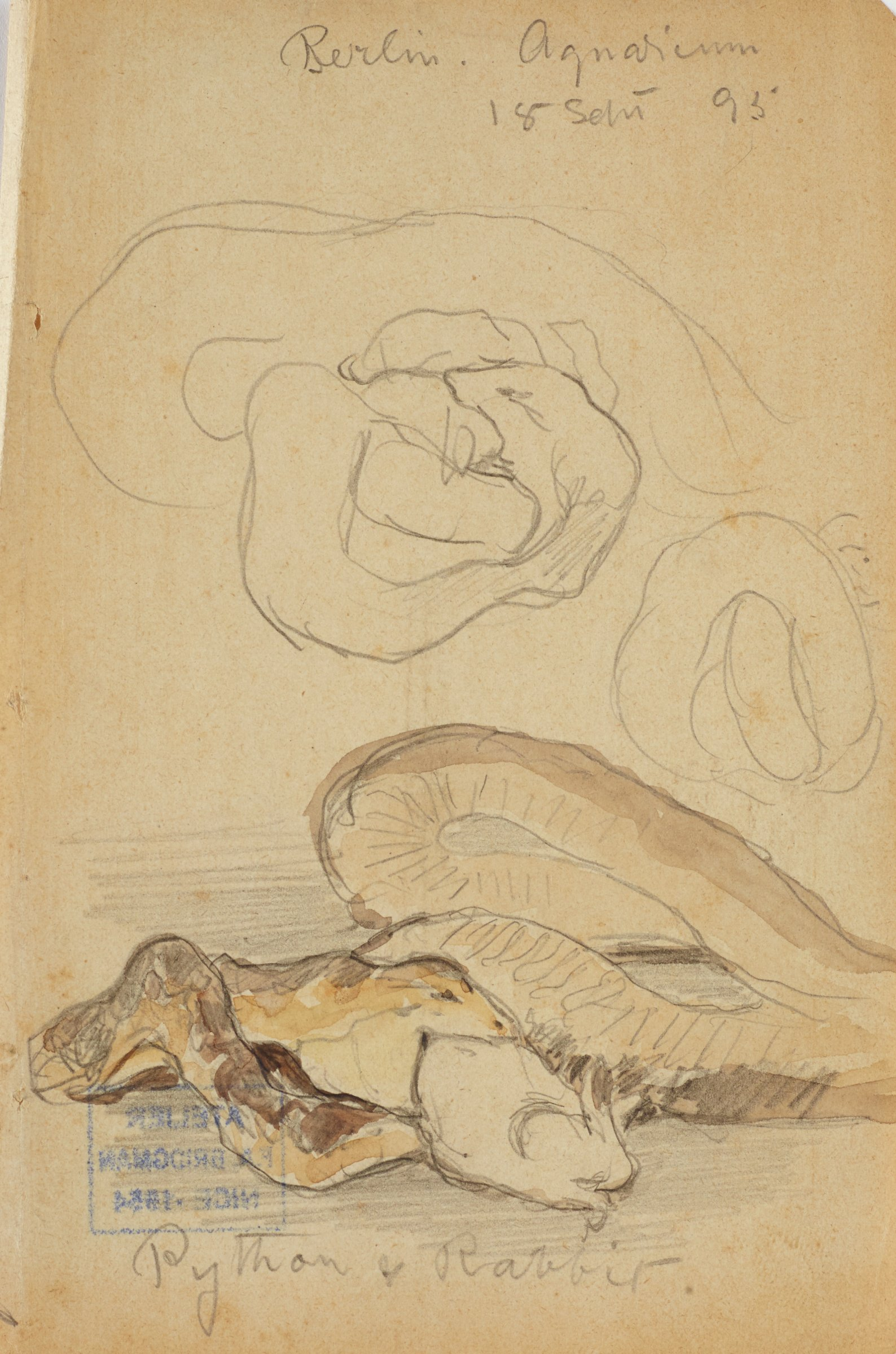 Python and Rabbit, Frederic Arthur Bridgman, graphite on paper