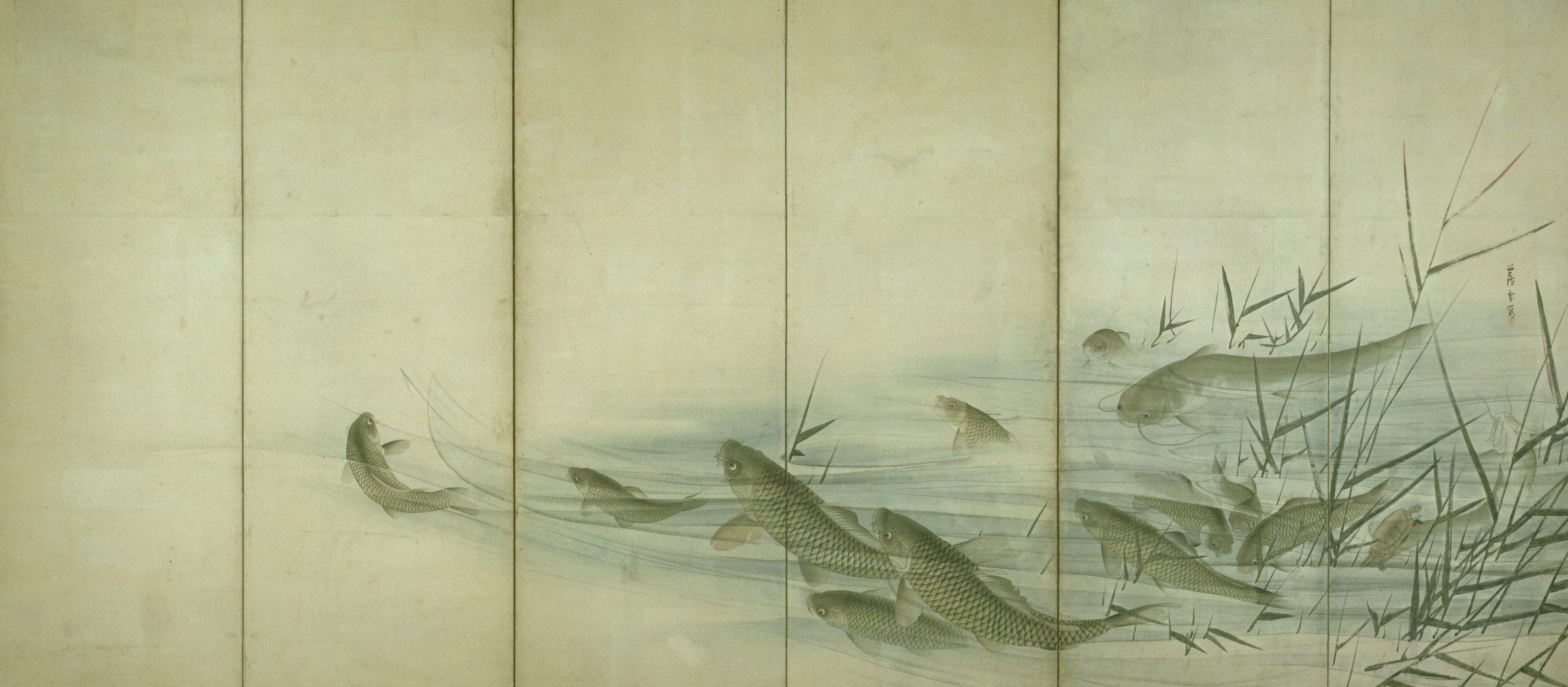 Swimming Carp, Catfish, and Tortoise Among Reeds, Nagasawa Rosetsu, ink and color on paper