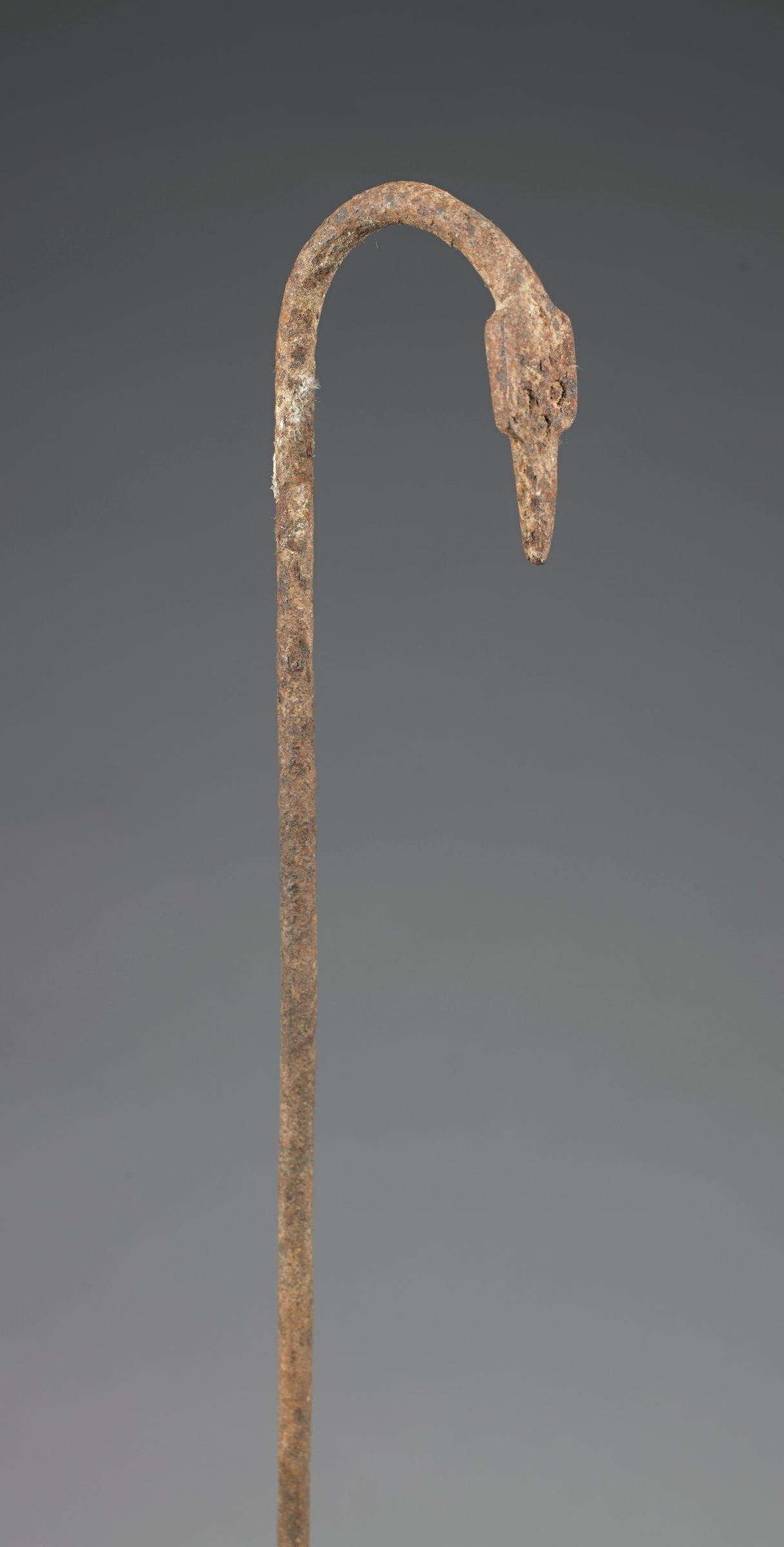 Staff with snake-head finial