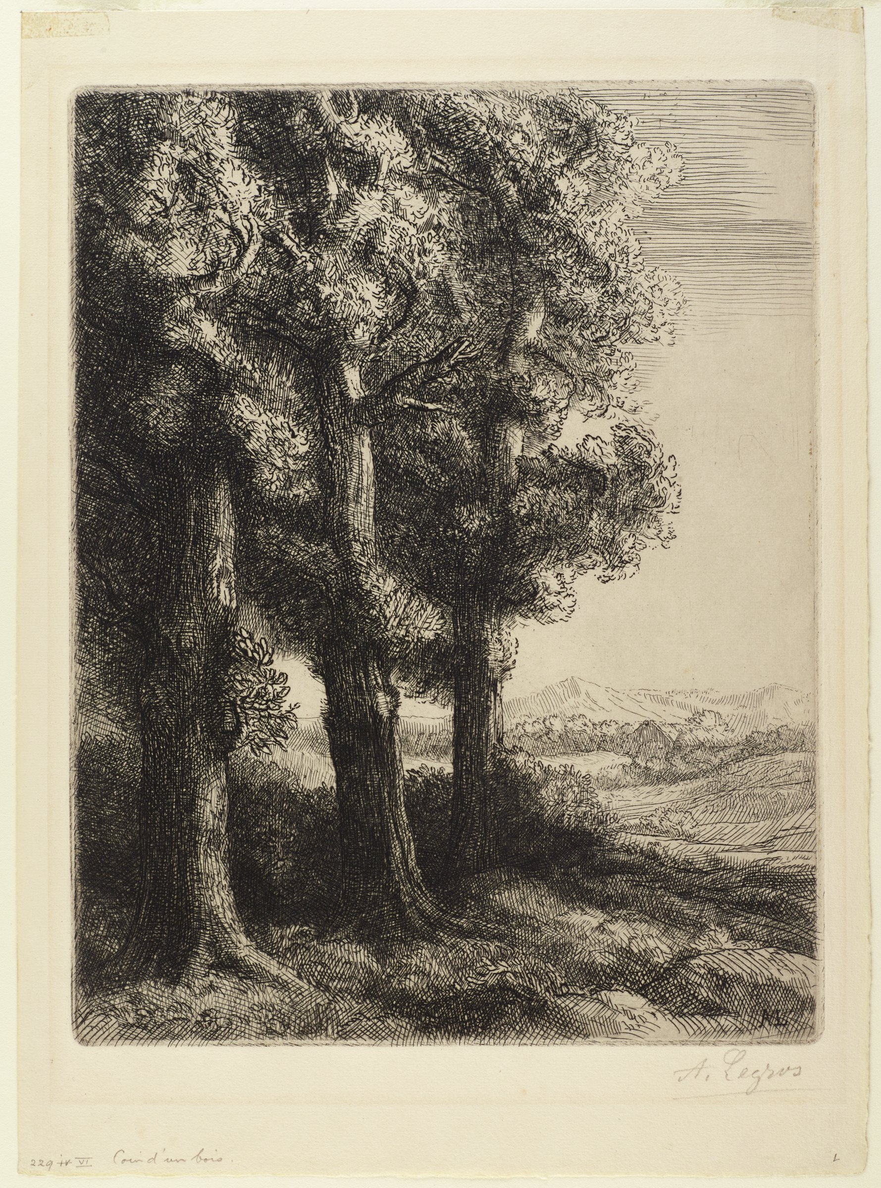 In the foreground stands a diagonal row of three trees. In the distance is a grassy plain, a large grove of trees, and a mountain top.