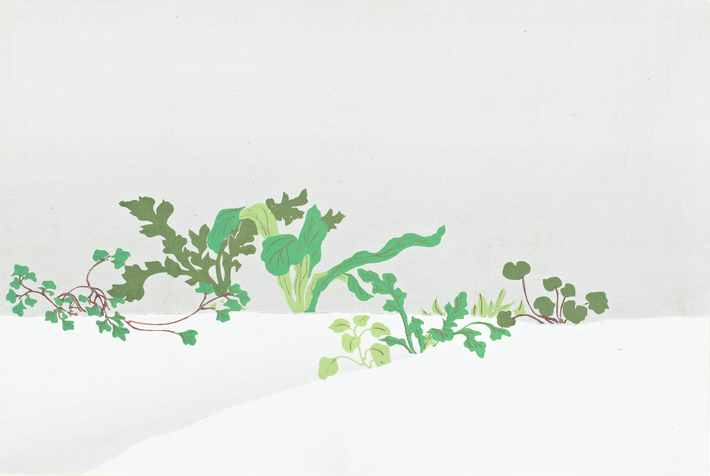 Nanakusa (Seven Herbs of Early Spring), from Momoyogusa (A World of Things), Volume 3, Kamisaka Sekka, ink and color on paper