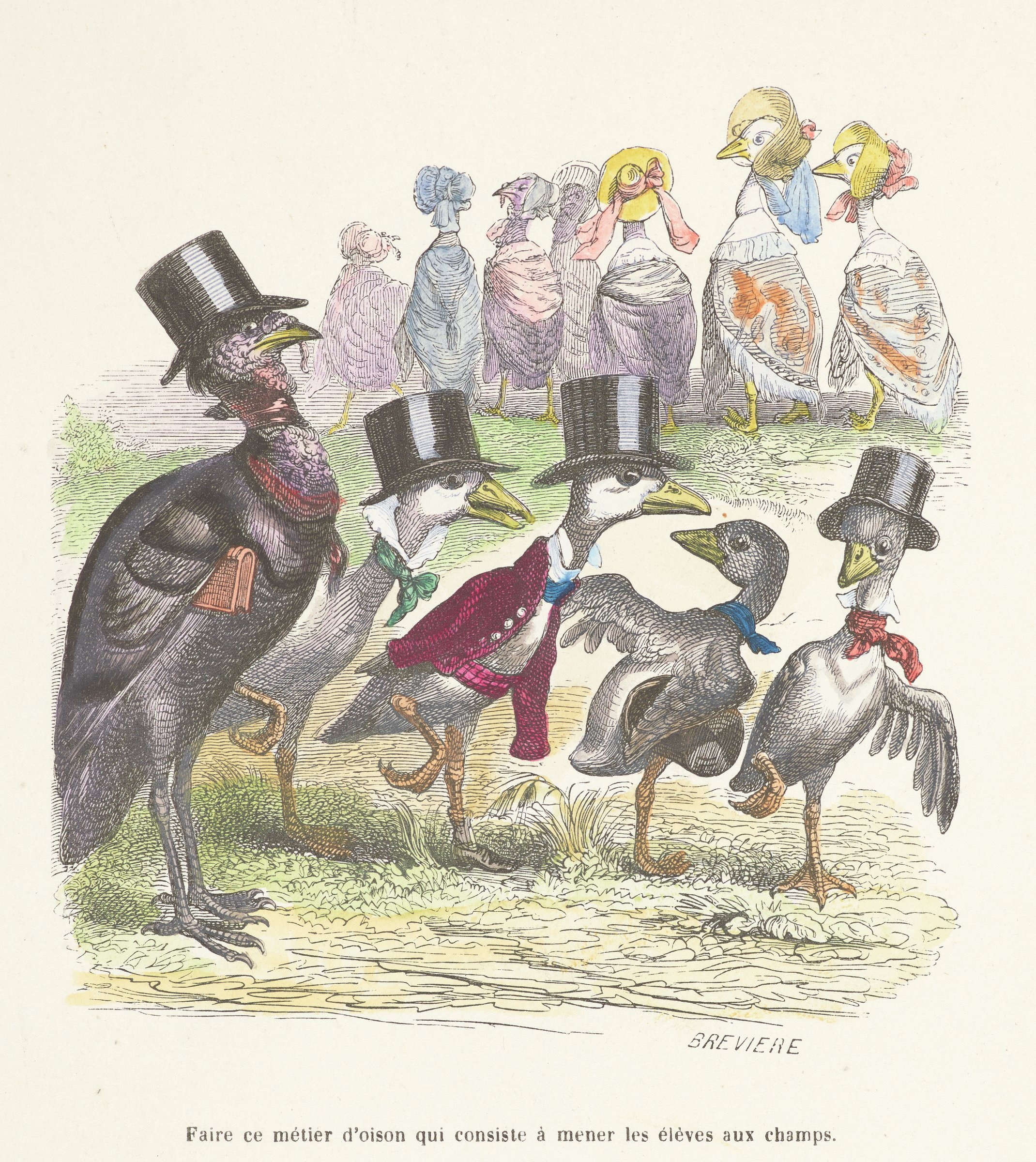 Various types of birds are personified. In the foreground, an older turkey in a top hat stands beside a line of young birds in top hats. In the background is a line of birds in bonnets and shaws.
