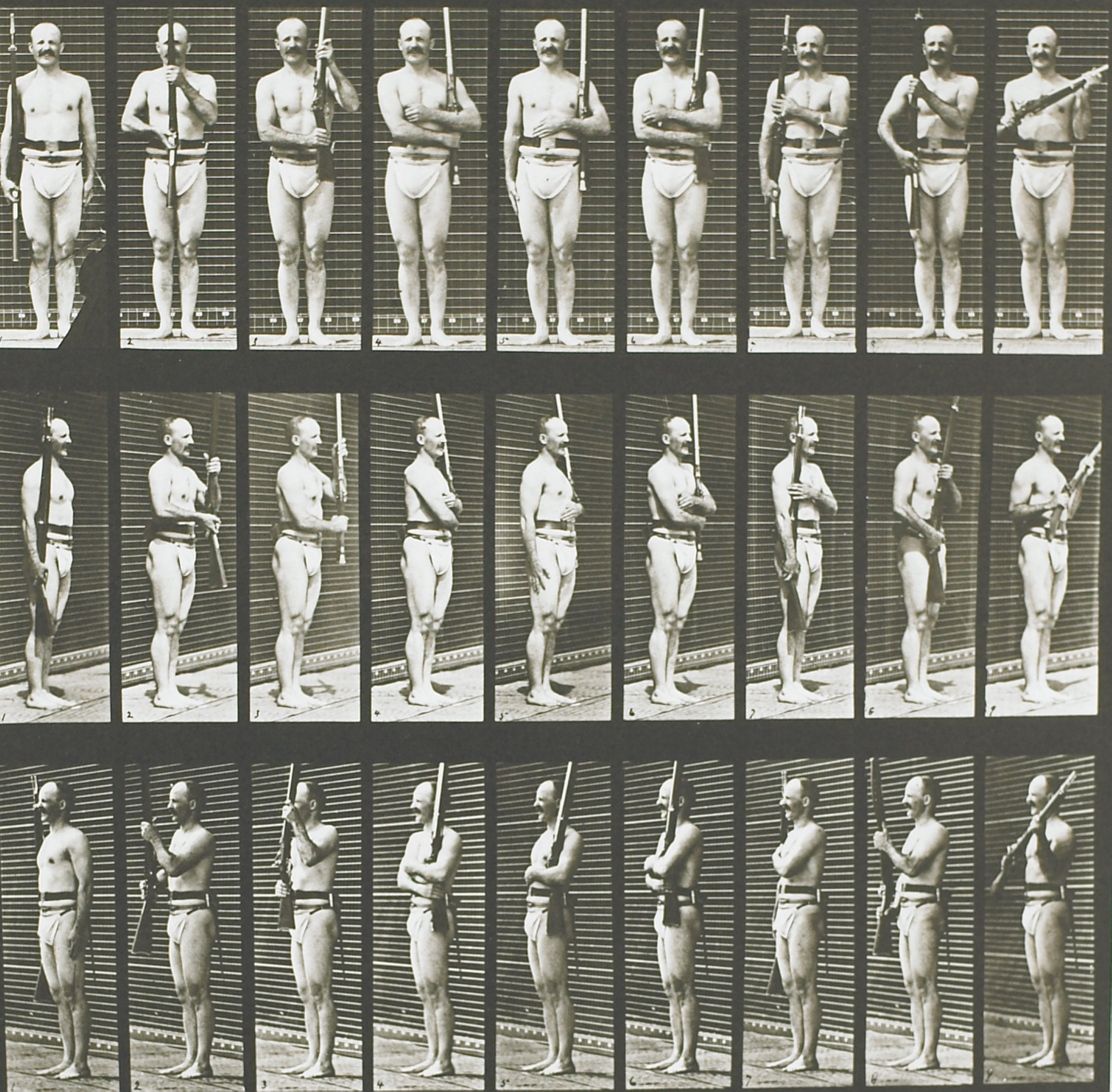 Animal Locomotion, Eadwaerd Muybridge, collotype