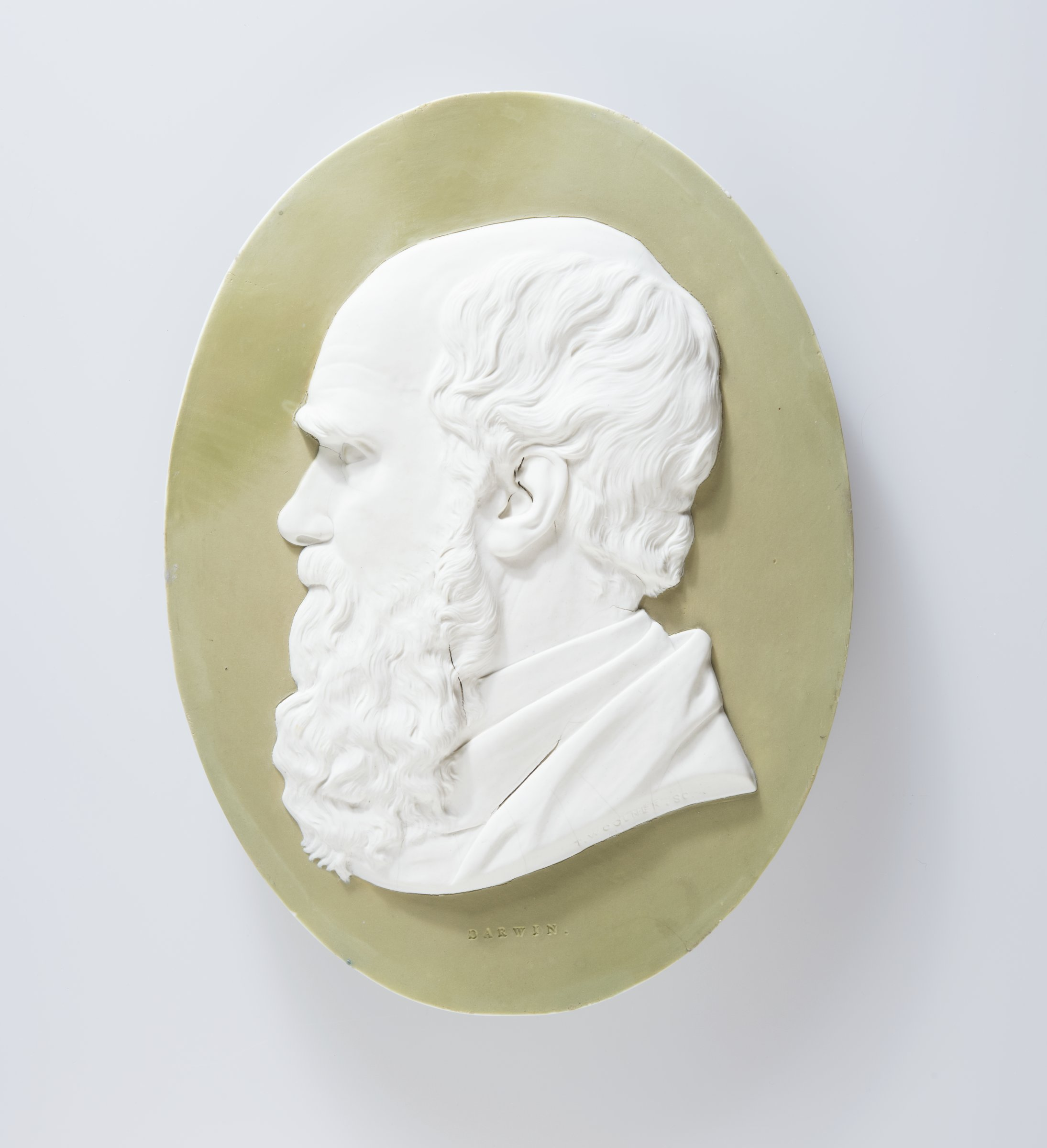 Large oval plaque of white jasper with peach-green jasper dip and white relief decoration with the portrait bust of Charles Robert Darwin (1809-1882), English naturalist, biologist and geologist, to left.
