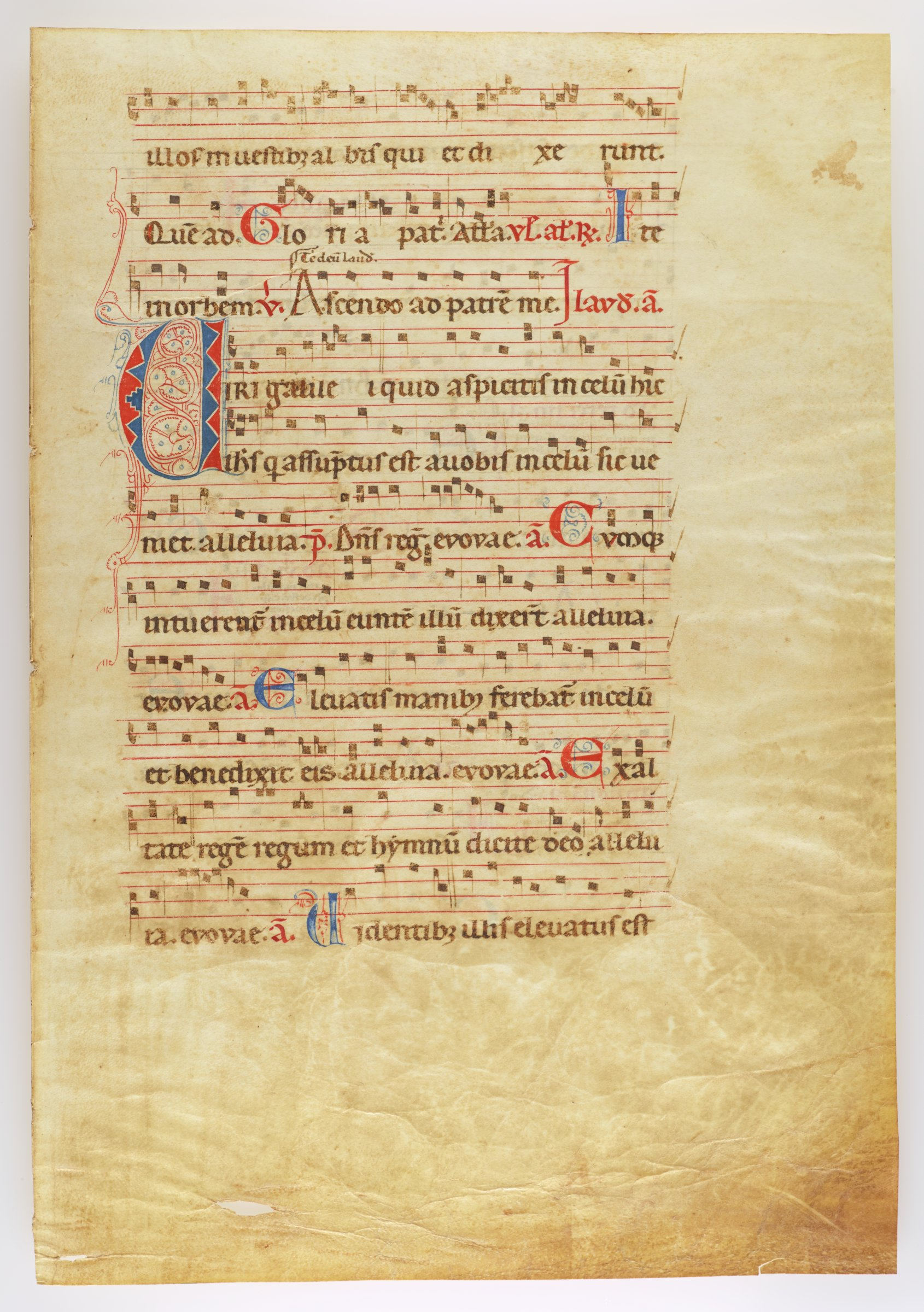 Single folio with musical notation in Gothic script on recto and verso. Initials with blue and red penwork.