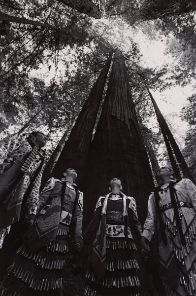 Black and white photograph of four Native American women wearing jingle dress regalia, holding hands and gazing upward at towering trees